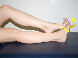 Ankle Sprain Exercise 7